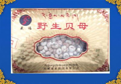 西藏野生贝母