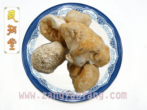西藏猴头菌