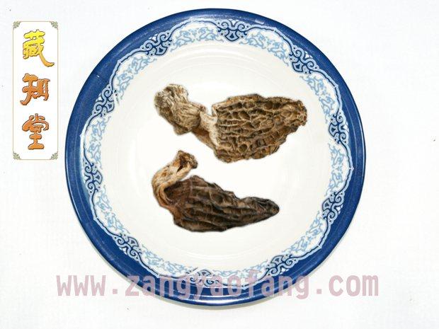 西藏羊肚菌